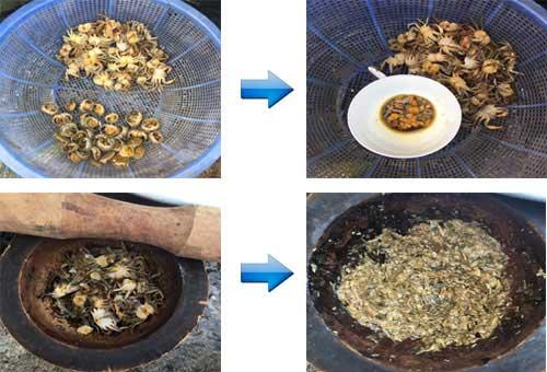 Sơ chế cua đồng làm bún riêu cua